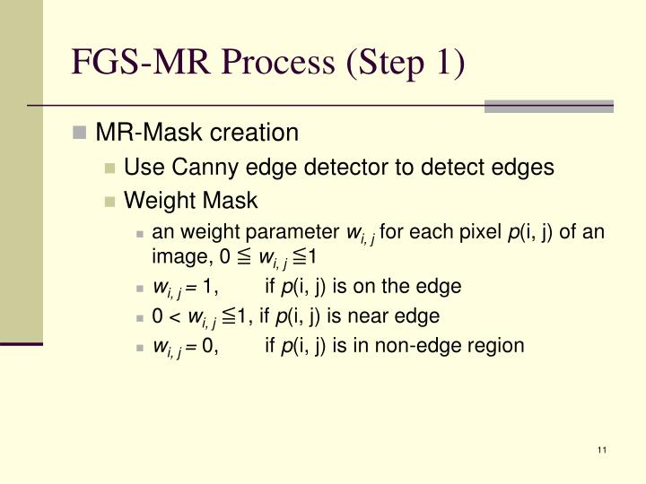 FGS-MR Process (Step 1)