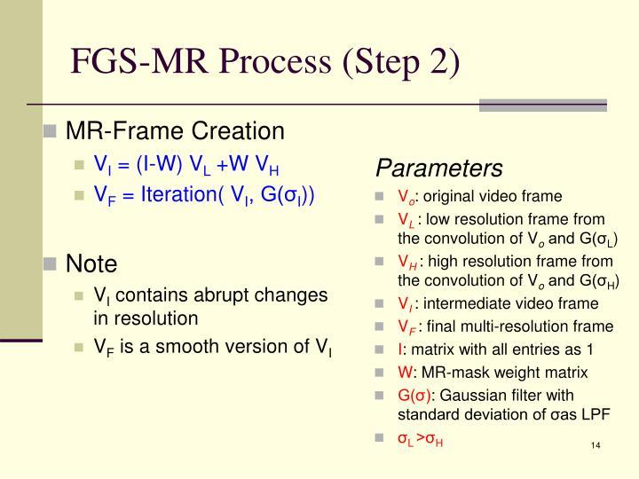FGS-MR Process (Step 2)