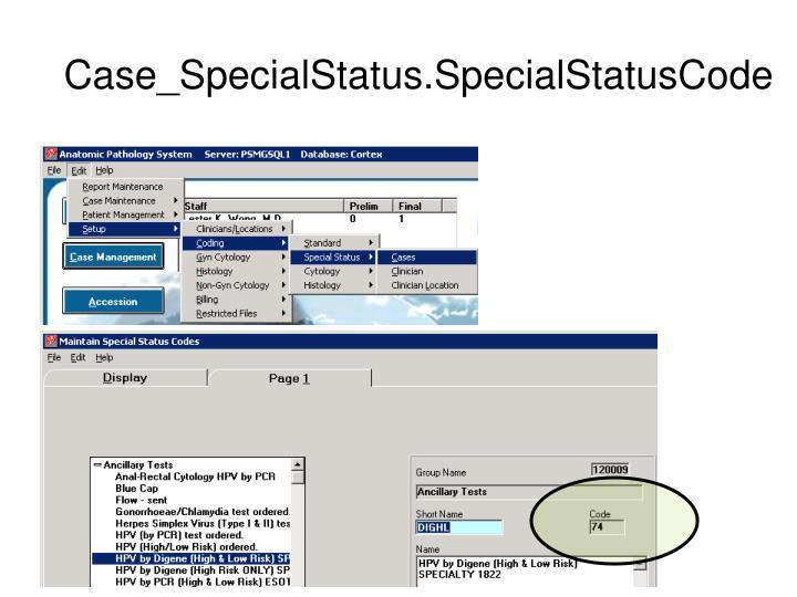 Case_SpecialStatus.SpecialStatusCode