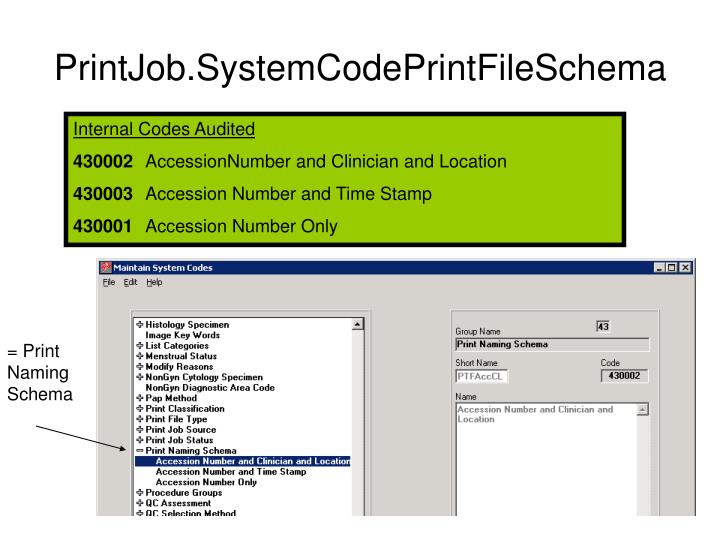 PrintJob.SystemCodePrintFileSchema