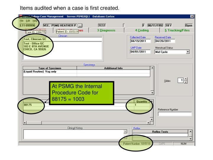 Items audited when a case is first created.