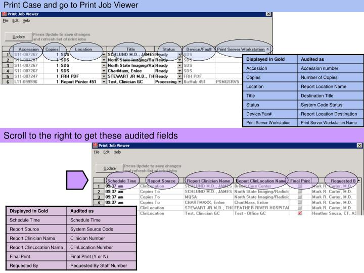 Print Case and go to Print Job Viewer