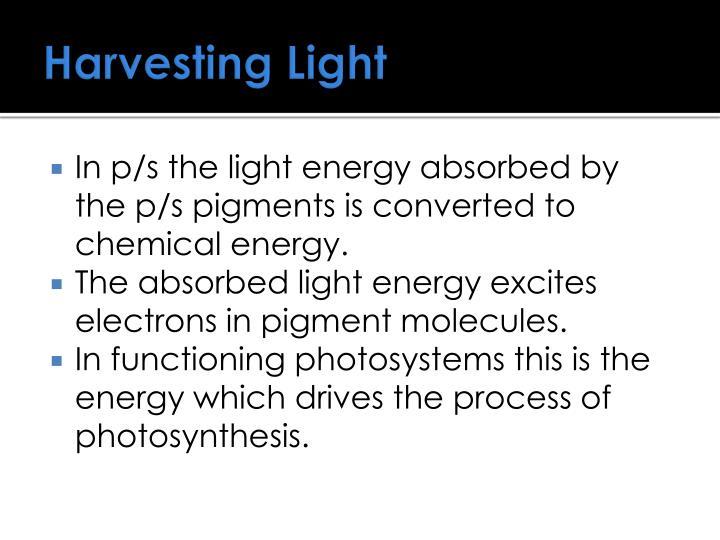 Harvesting Light