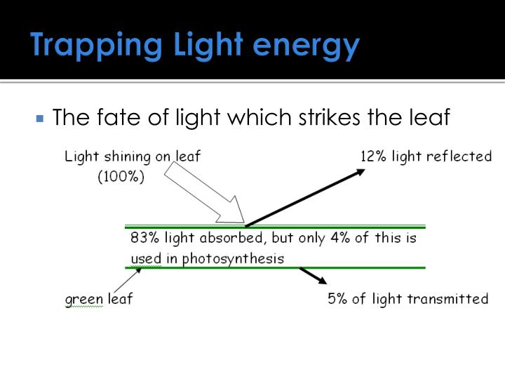 Trapping Light energy