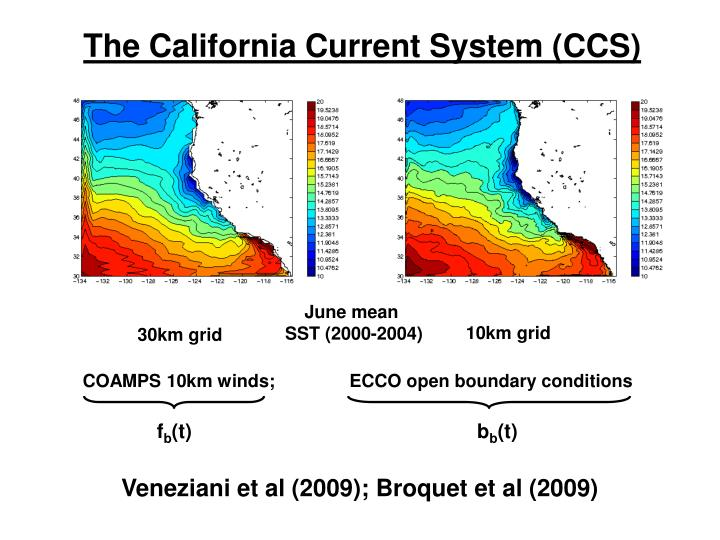 The California Current System (CCS)