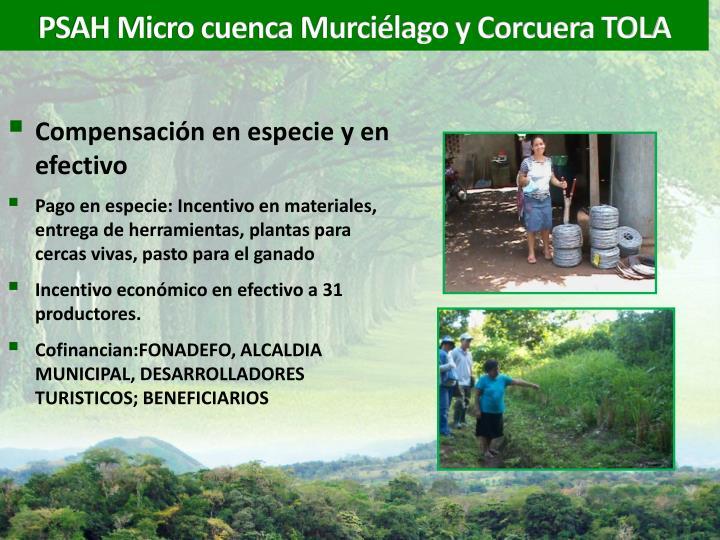 PSAH Micro cuenca Murciélago y Corcuera TOLA