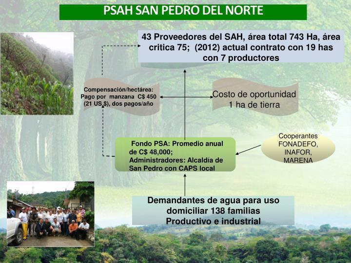 43 Proveedores del SAH, área total 743 Ha, área critica 75;  (2012) actual contrato con 19 has con 7 productores