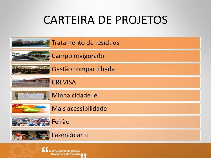 CARTEIRA DE PROJETOS