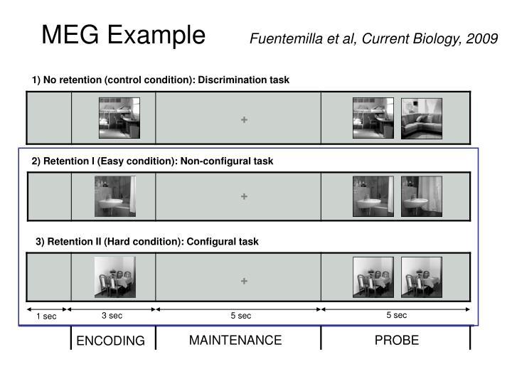 MEG Example