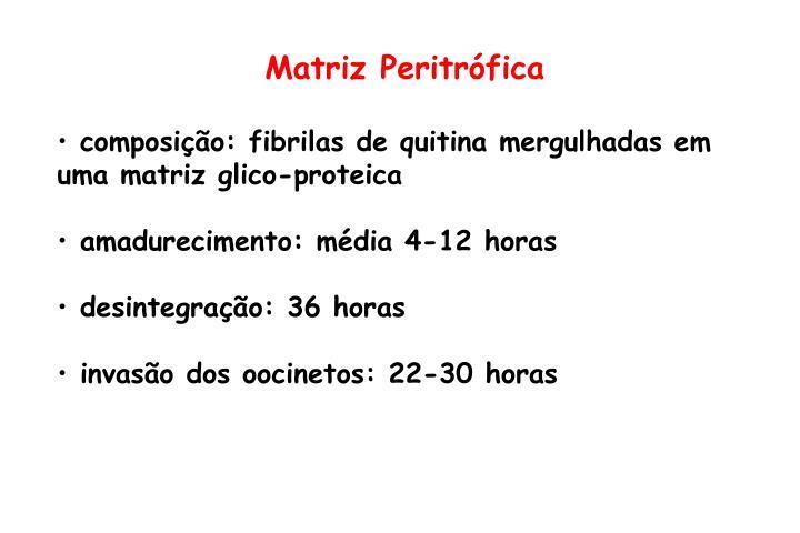 Matriz Peritrófica