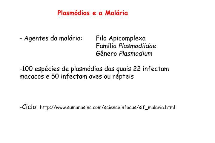 Plasmódios e a Malária
