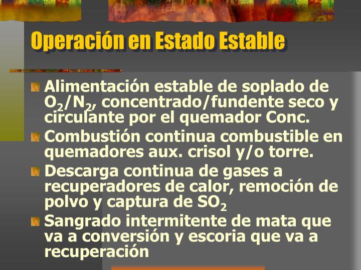 Operación en Estado Estable