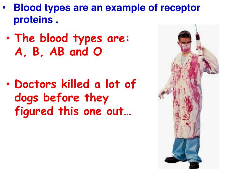 Blood types are an example of receptor proteins .