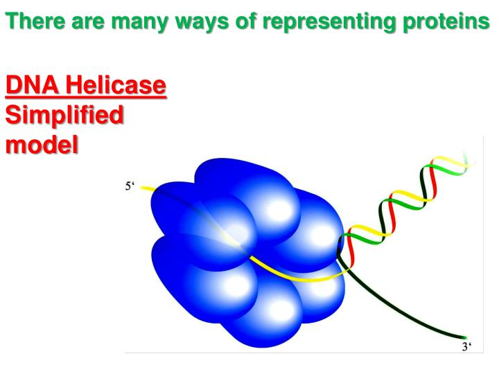 There are many ways of representing proteins