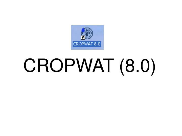 CROPWAT (8.0)