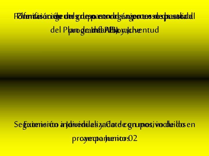Formación de un grupo no orgánico en respuesta al programa Alborache