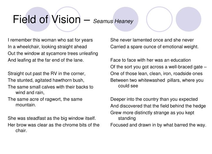 Field of Vision –