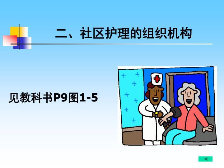 二、社区护理的组织机构