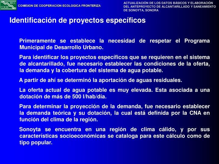 Identificación de proyectos específicos