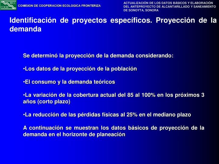 Identificación de proyectos específicos. Proyección de la demanda