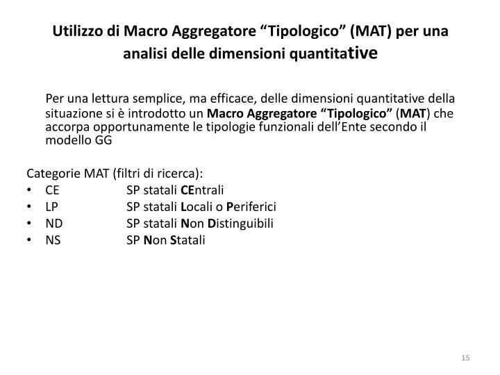 """Utilizzo di Macro Aggregatore """"Tipologico"""" (MAT) per una analisi delle dimensioni quantita"""