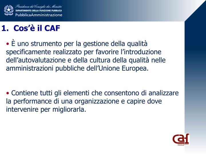 1.  Cos'è il CAF