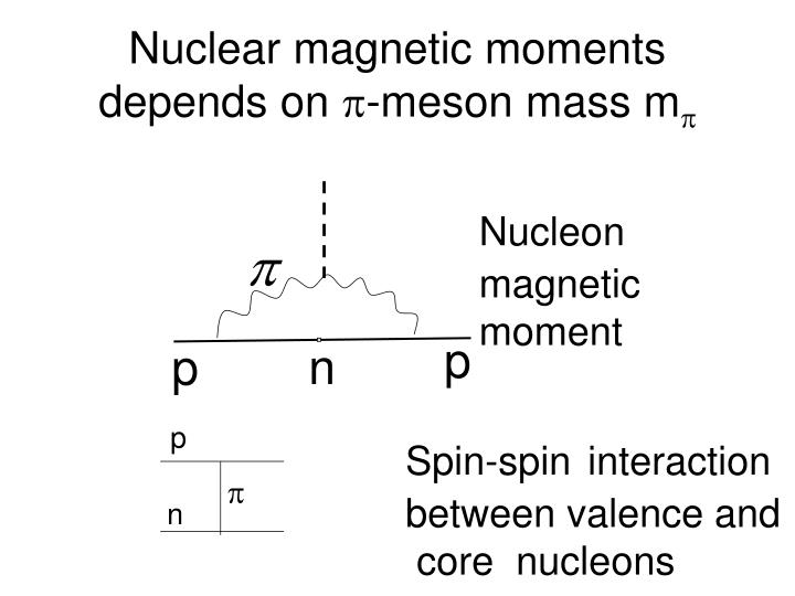 Nuclear magnetic moments depends on