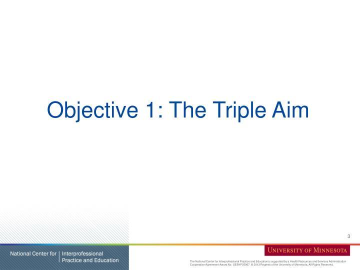 Objective 1: The Triple Aim