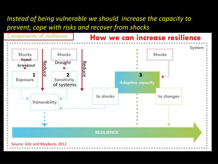 Instead of being vulnerable we should  increase the capacity to prevent, cope with risks and recover...