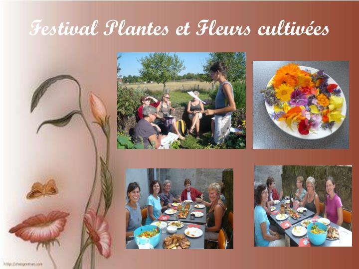 Festival Plantes et Fleurs cultivées