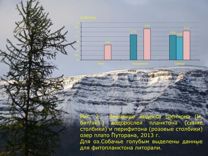 Рис. 2.  Значение индекса Шеннона (Н, бит/экз.) водорослей планктона (синие столбики) и перифитона (