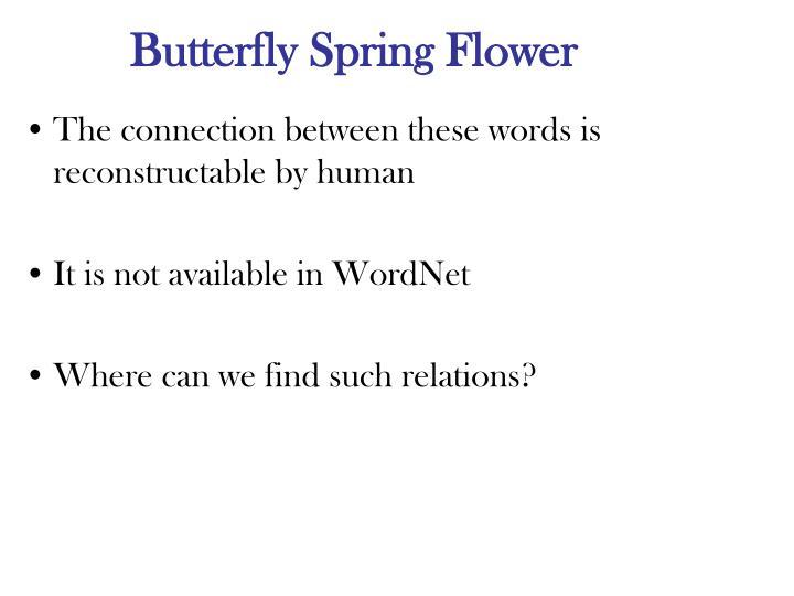 Butterfly Spring Flower