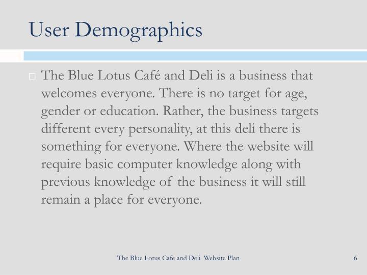 User Demographics