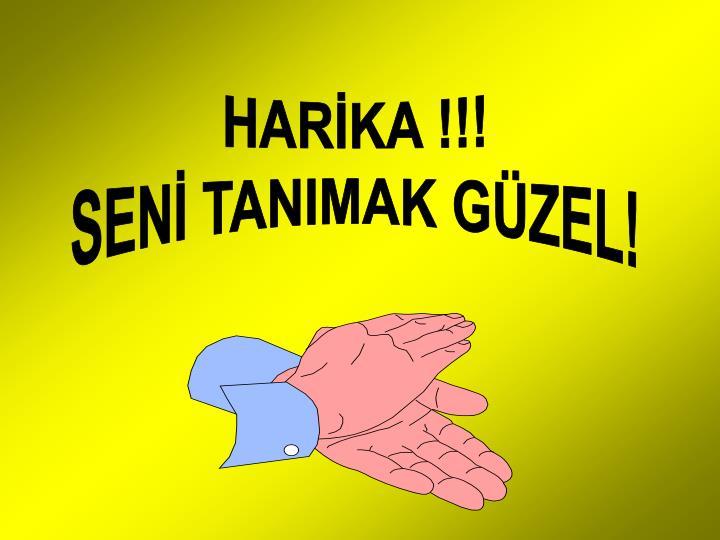 HARİKA !!!