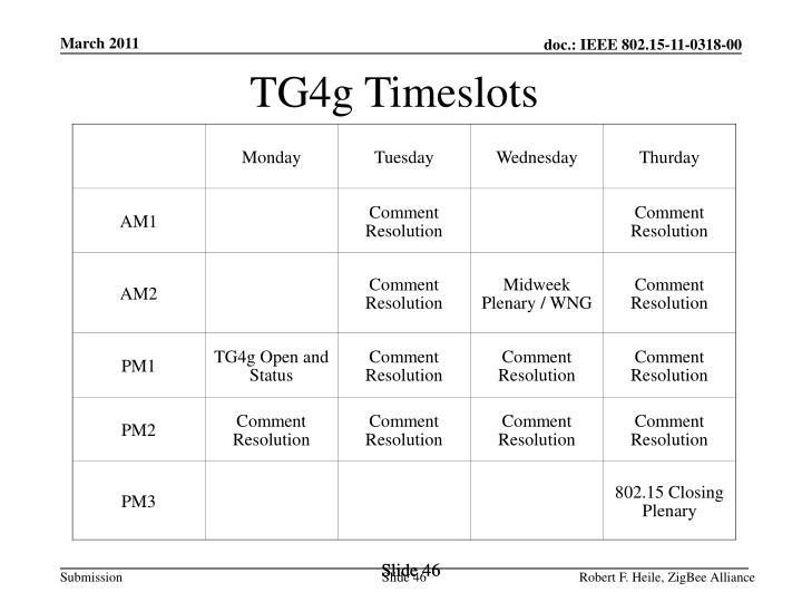 TG4g Timeslots