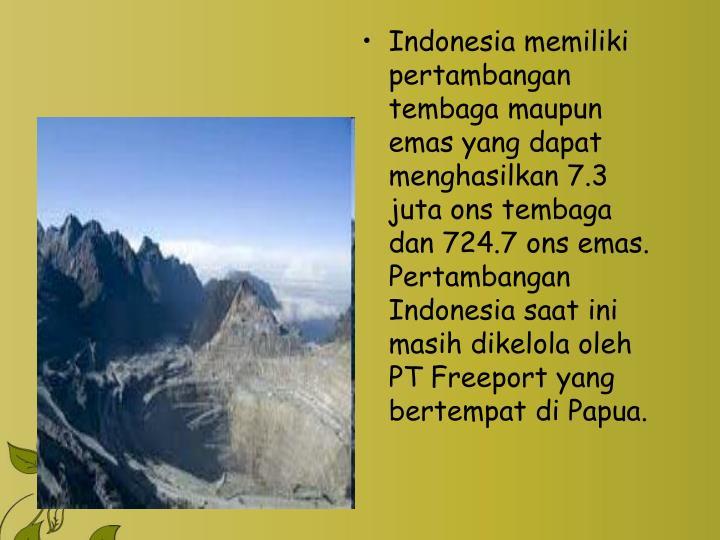 Indonesia memiliki pertambangan tembaga maupun emas yang dapat menghasilkan 7.3 juta ons tembaga dan 724.7 ons emas. Pertambangan Indonesia saat ini masih dikelola oleh PT Freeport yang bertempat di Papua.