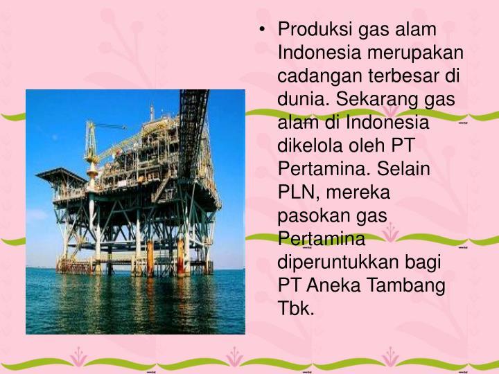 Produksi gas alam Indonesia merupakan cadangan terbesar di dunia. Sekarang gas alam di Indonesia dikelola oleh PT Pertamina. Selain PLN, mereka pasokan gas Pertamina diperuntukkan bagi PT Aneka Tambang Tbk.