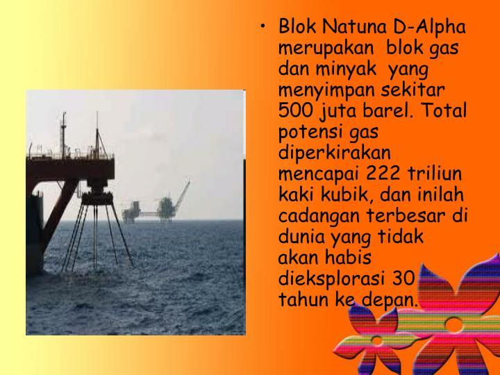 Blok Natuna D-Alpha merupakan blok gas dan minyak yang menyimpan sekitar 500 juta barel. Total potensi gas diperkirakan mencapai 222 triliun kaki kubik, dan inilah cadangan terbesar di dunia yang tidak akan habis dieksplorasi 30 tahun ke depan.