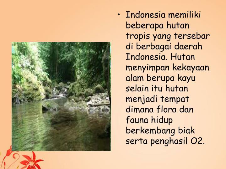 Indonesia memiliki beberapa hutan tropis yang tersebar di berbagai daerah Indonesia. Hutan menyimpan kekayaan alam berupa kayu selain itu hutan menjadi tempat dimana flora dan fauna hidup berkembang biak serta penghasil O2.