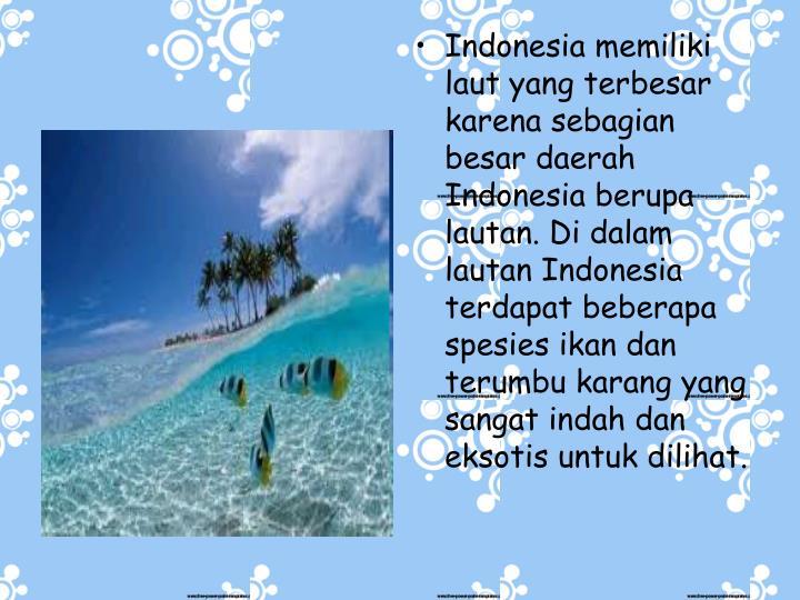 Indonesia memiliki laut yang terbesar karena sebagian besar daerah Indonesia berupa lautan. Di dalam lautan Indonesia terdapat beberapa spesies ikan dan terumbu karang yang sangat indah dan eksotis untuk dilihat.