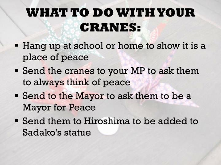 WHAT TO DO WITH YOUR CRANES: