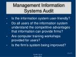 management information systems audit2