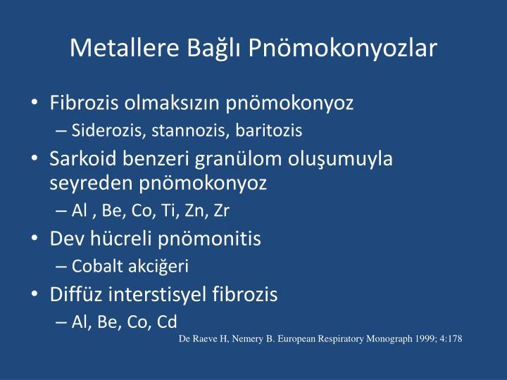 Metallere Bağlı Pnömokonyozlar