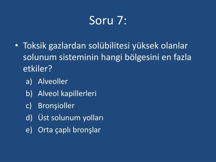 Soru 7: