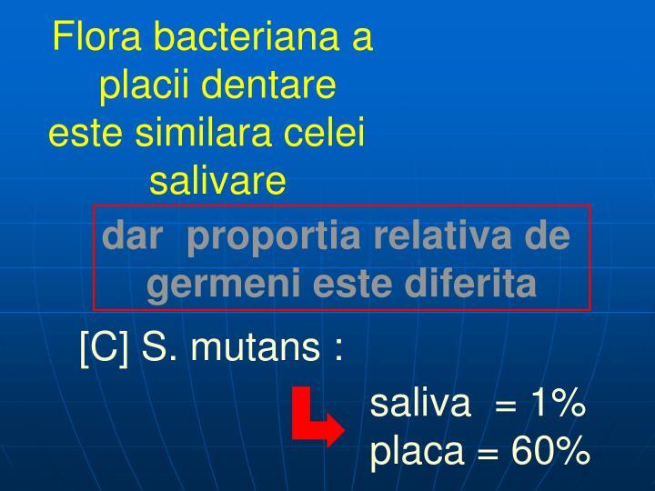 Flora bacteriana a