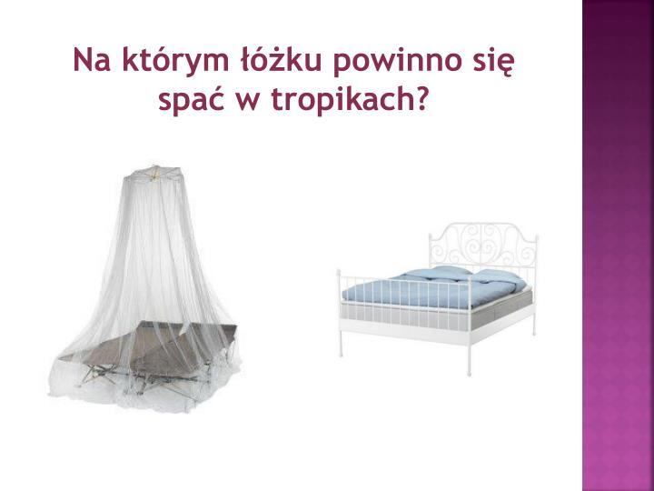 Na którym łóżku powinno się spać w tropikach?