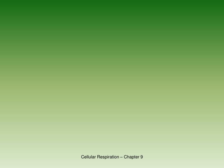 Cellular Respiration – Chapter 9