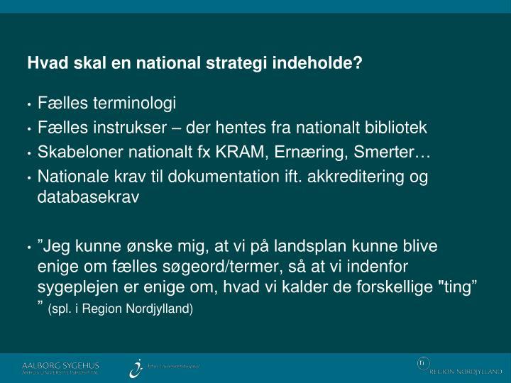 Hvad skal en national strategi indeholde?