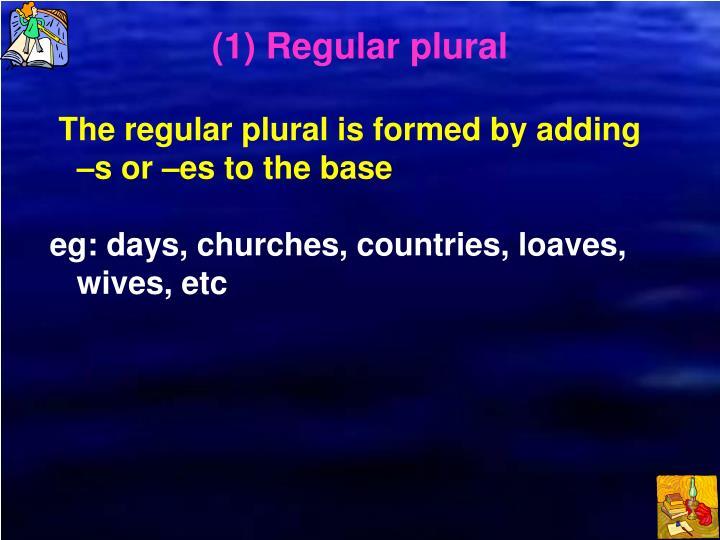 (1) Regular plural
