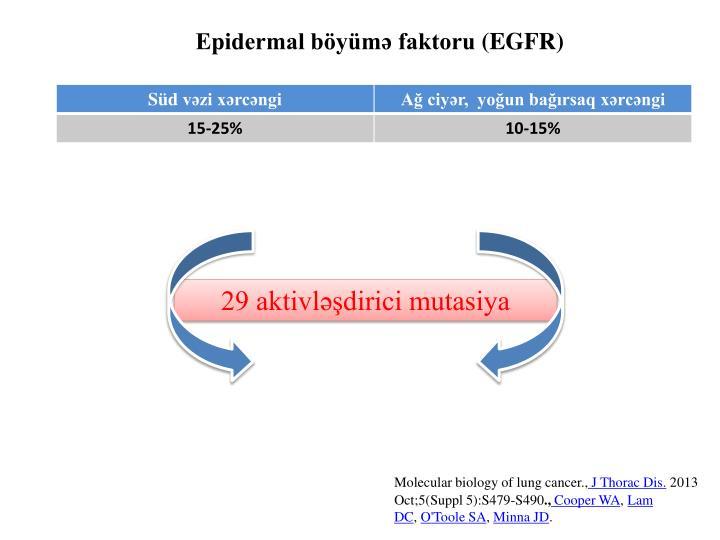 Epidermal böyümə faktoru